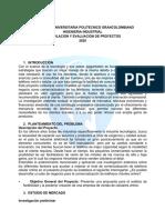 Estudio de factibilidad-Formulacion de Proyectos