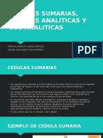 CEDULAS SUMARIAS, CEDULAS ANALITICAS Y SUB ANALITICAS