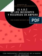 EL ABC DE LOS RECURSOS E INCIDENTES EN AMPARO