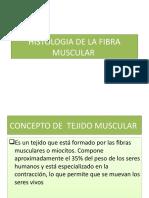 20977348-Histologia-de-La-Fibra-Muscular.pptx