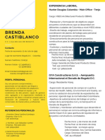 CV Brenda CastiblancoV.pdf