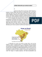 sorgo-ingrediente-alternativo-para-nutricao-animal.doc