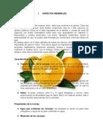 217434004-Informe-de-Naranja-1.docx