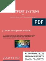 EXPERT SYSTEM E.S