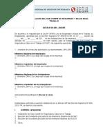 Formato N 10 - Acta de instalacion del comite