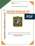 CARPEtpedag2020.pdf