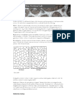 carbonateThinSection.pdf.pdf