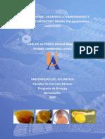 Descripcion del desarrollo Embrionario y larval del coroncoro negro