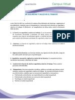 LICENCIA EN SEGURIDAD Y SALUD EN EL TRABAJO.pdf