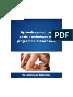 79955021-Agrandissement-du-penis-techniques-et-programme-d-exercices.pdf