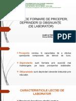 Perca Adelina (didactică niv 2).pptx