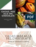 Cacao Más allá del chocolate (2).pdf