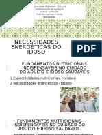 NECESSIDADE DE ENERGIA DO IDOSO.pptx