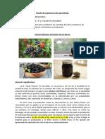 EXPERIENCIA DE APRENDIZAJE DE MATEMÁTICA 1-2-3