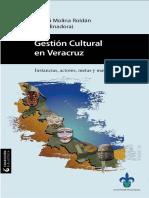 Gestion Cultural en Veracruz. Instancias