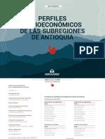 Informes Socioeconómicos de Las Subregiones de Antioquia 2019