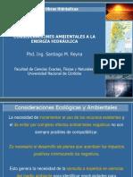 1. Presas Ambiental.pdf