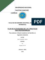 PLAN DE ACTIVIDADES DE LAS PRACTICAS PRE PROFESIONALES.docx