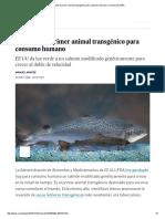Aprobado el primer animal transgénico para consumo humano _ Ciencia _ EL PAÍS