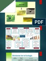 ppt NOCIONES DE ECOLOGIA