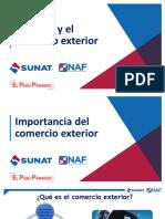 Aduanas_2019(NAF)_final.pdf