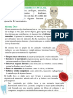 SISTEMAS FLEXIBLES - PDF