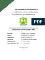 REDES NEURONALES ARTIFICIALES PARA LA PREDICCIÓN DE LA CONCENTRACION.pdf