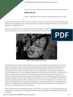 LA ÚLTIMA ENTREVISTA A FRANCIS BACON _ ARTE_ espacio y contenido