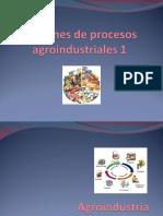 6.1 Agroindustria.ppt