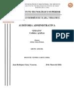 Ensayo Cedulas y Graficas.pdf