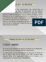 SEGUROS,-_Seguro_Directo