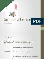 Gimnasia_Cerebral_de_Luz_Maria_Ibarra.pptx