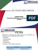 MATRIZ PEYEAOK.pdf