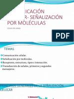 COMUNICACION-bm.pdf