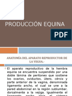 PRODUCCION EQUINA.pptx