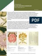 ccmutis.pdf