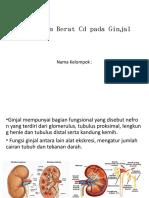 ginjal-ekotoksikologi.pptx