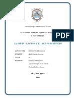 ACAPARAMIENTO EN EL PERÚ.docx