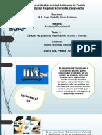 Cedulas de auditoría _ Presentación