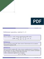 Determinanti_Stampa.pdf