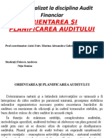 Proiect audit.pptx