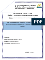 version memoire 1.1.pdf