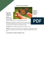 TALLER_DEL_CIRCO_DE_LA_MARIPOSA_1_ (1)