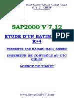 formatio Sap2000-Complet.pdf
