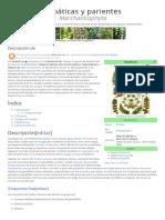 marchantiophyta.pdf