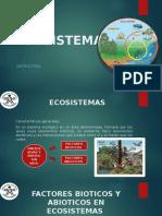 DIAPOSITIVAS ECOSISTEMAS.pptx