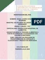 INVESTIGACION DE PAN