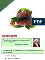 ciclos_biogeoquimicos teoria.pdf