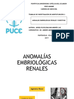 ANOMALÍAS EMBRIOLÓGICAS RENALES