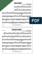 HL_DDS_101074737FQicTOn3.sco.pdf